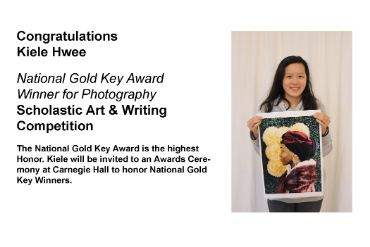 SHS Student wins art award