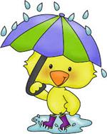 image of duck holding an umbrella