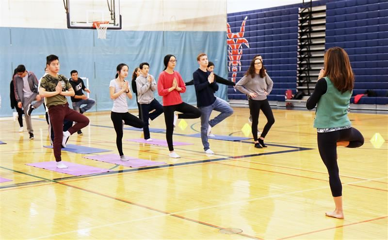 Students standing in tree pose on yoga mats in the school gymnasium